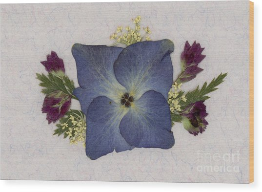 Blue Hydrangea Pressed Floral Design Wood Print