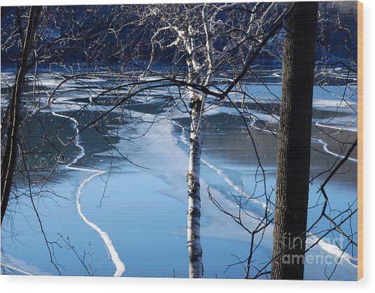 Blue Ice Wood Print by Andrea Simon