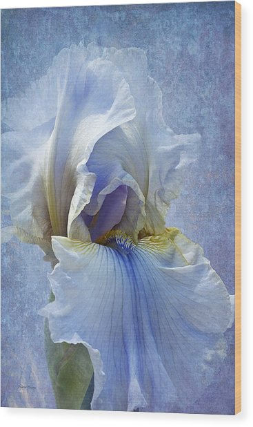 Blue Iris Fog Wood Print