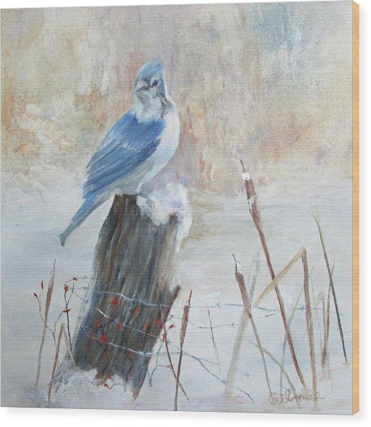 Blue Jay In Winter Wood Print