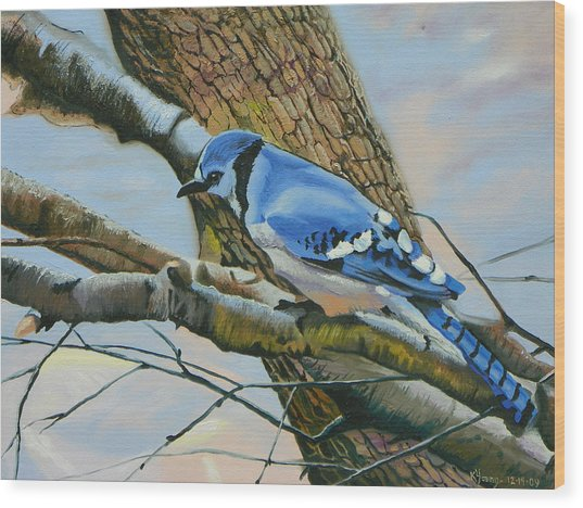 Blue Jay Wood Print by Kenneth Young