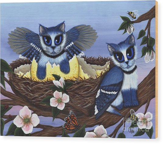 Blue Jay Kittens Wood Print