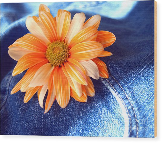 Blue Jeans And Daisies Wood Print by Wendy Mogul