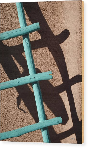 Blue Ladder And Shadow Wood Print by David Gordon