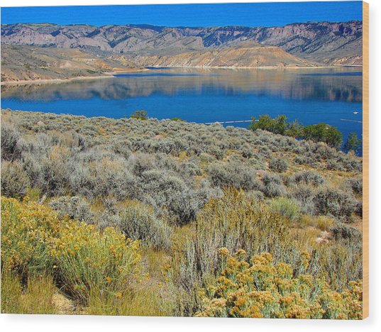 Blue Mesa Reservoir 1 Wood Print