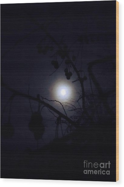 Blue Moons Wood Print by The Stone Age