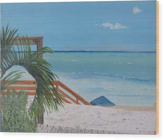 Blue Mountain Beach Dune Wood Print by John Terry