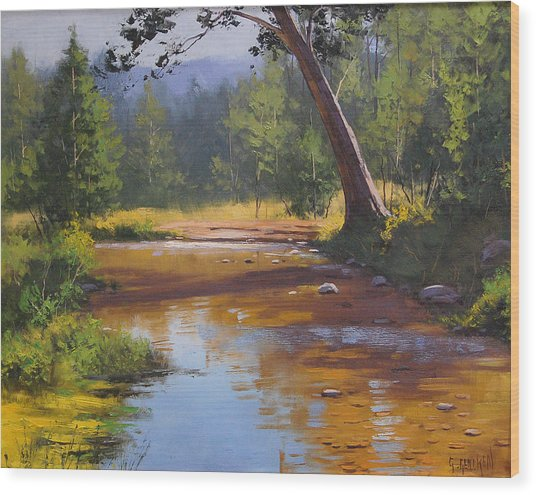 Blue Mountains Coxs River Wood Print by Graham Gercken