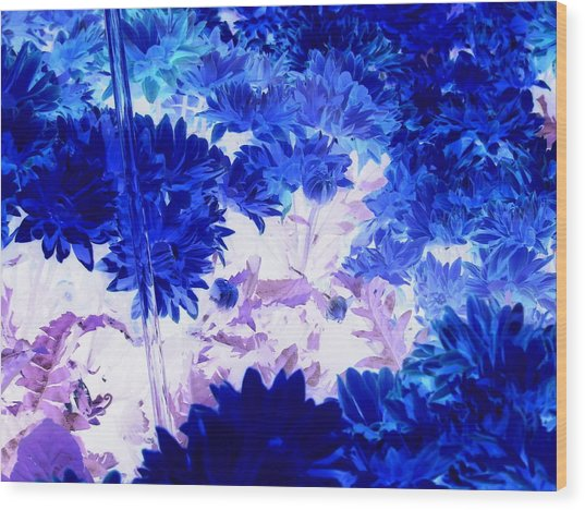 Blue Mums And Water Wood Print