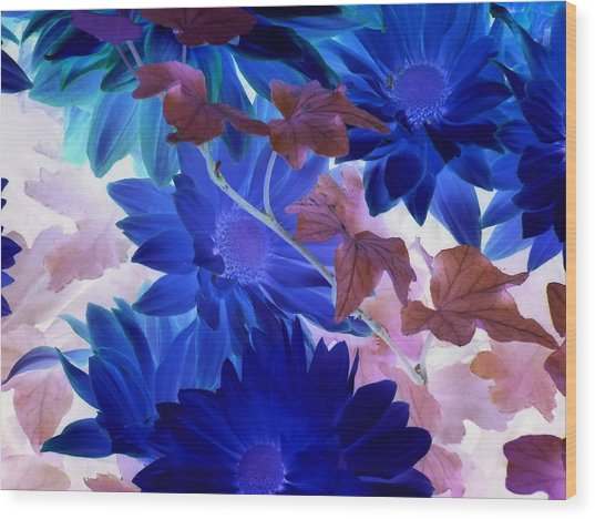 Blue Mums With Purple Ivy Wood Print