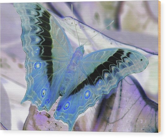 Blue Negative Wood Print by JAMART Photography