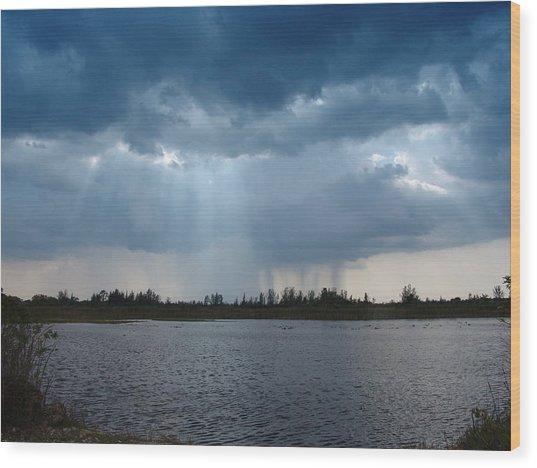 Blue Rain Down Wood Print by Florene Welebny