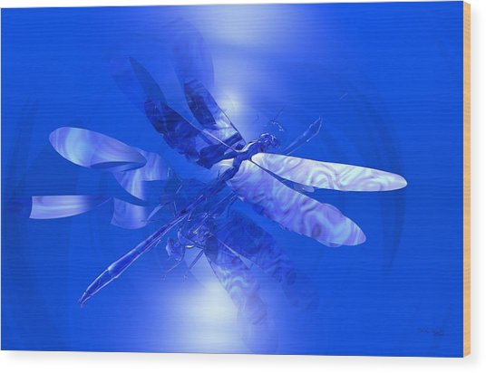 Blue Reflections Dragonfly Wood Print