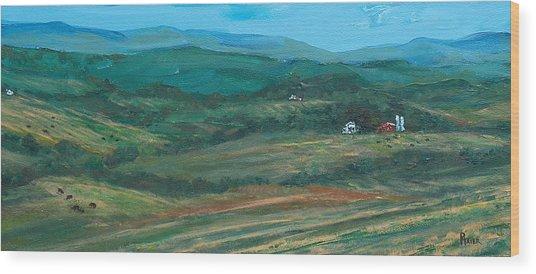 Blue Ridge Black Cows Wood Print by Pete Maier