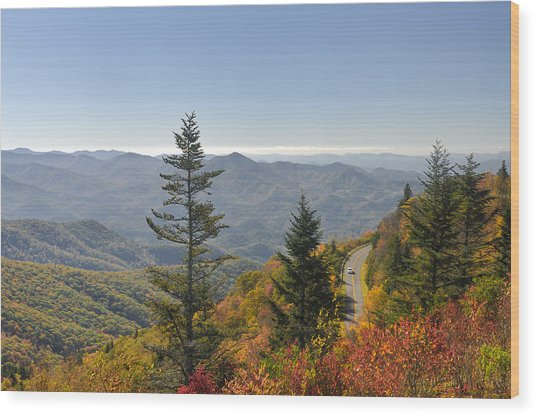 Blue Ridge Drive Wood Print by Darrell Young