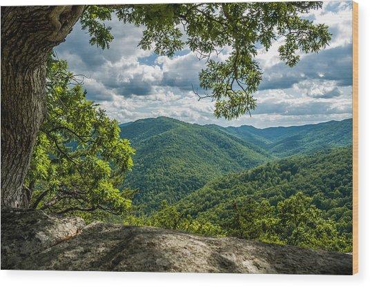 Blue Ridge Mountain View Wood Print
