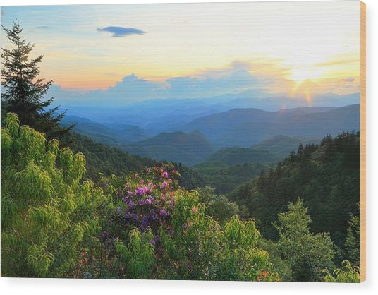 Blue Ridge Parkway And Rhododendron  Wood Print