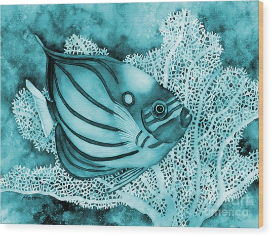 Blue Ring Angelfish On Blue Wood Print