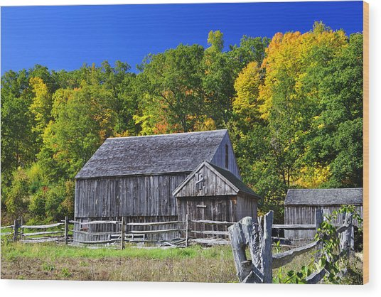 Blue Sky Autumn Barn Wood Print