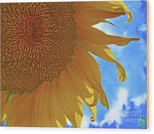 Blue Sky Sunflower Wood Print