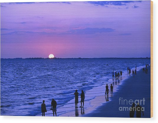 Blue Sunset On The Gulf Of Mexico At Fort Myers Beach In Florida Wood Print
