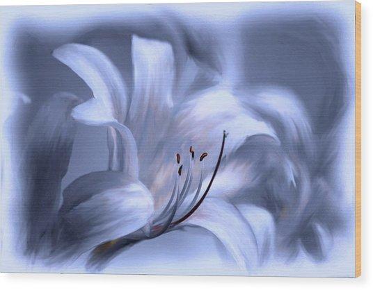Blue Tinted Swirl Lily Wood Print by Jim  Darnall