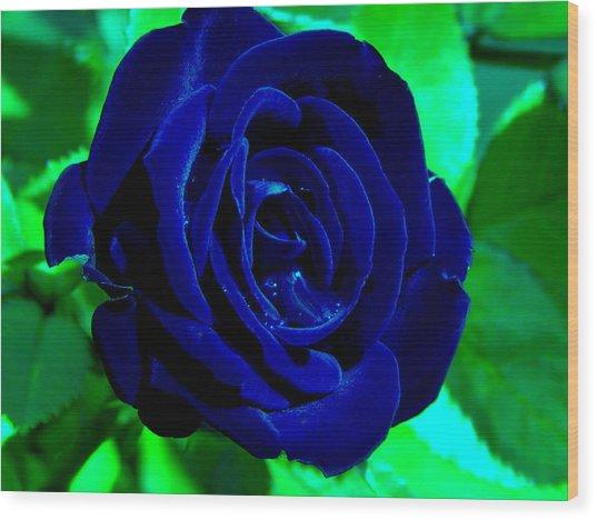 Blue Velvet Rose Wood Print