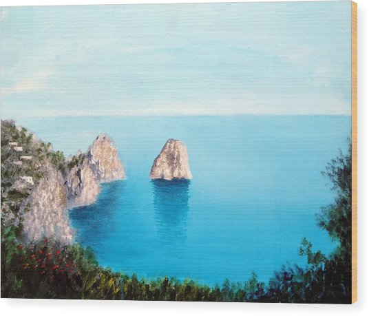 Blue Waters Of Capri  Wood Print