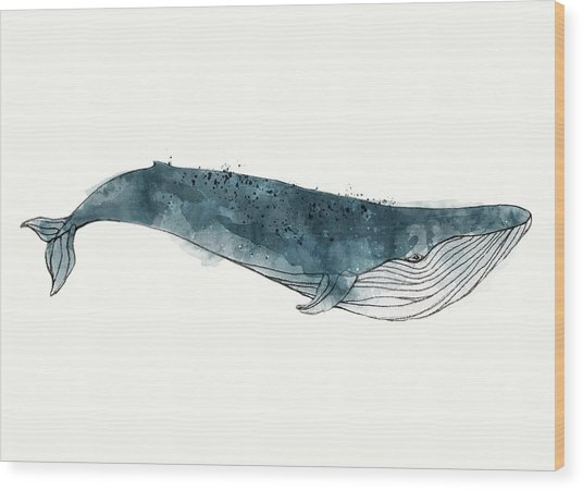 Blue Whale From Whales Chart Wood Print