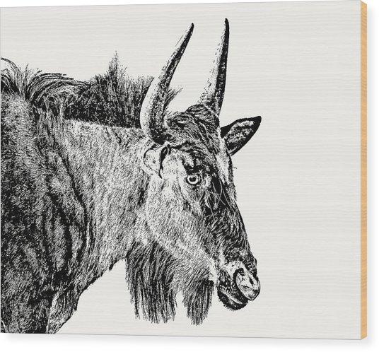 Blue Wildebeest Close-up Wood Print