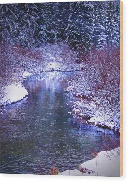 Blue Winter Wood Print
