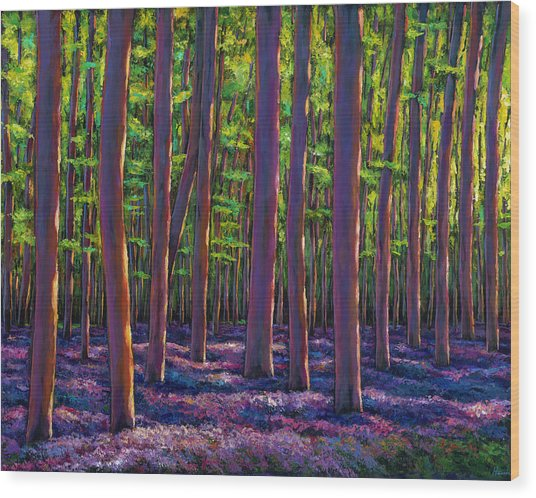 Bluebells And Forest Wood Print