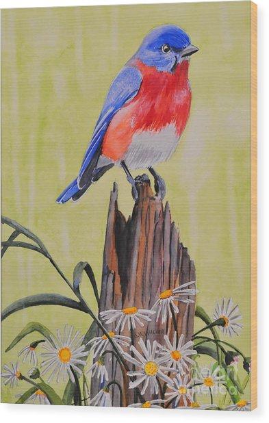 Bluebird And Daisies Wood Print