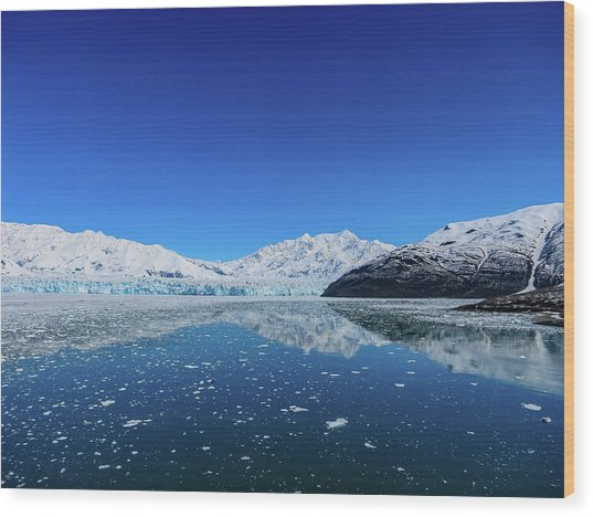 Bluebird Day At Hubbard Glacier Wood Print