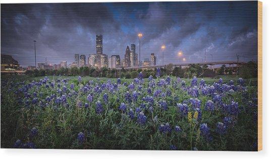 Bluebonnet Houston Wood Print