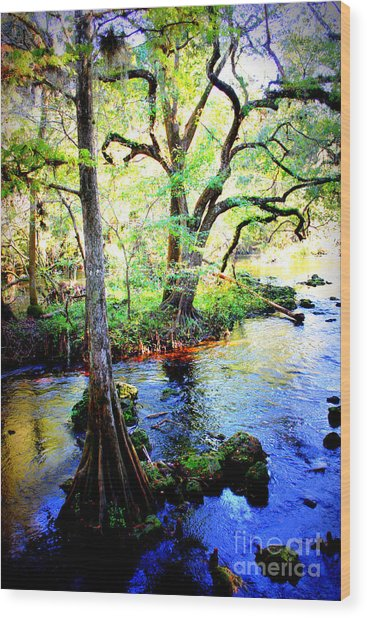 Blues In Florida Swamp Wood Print
