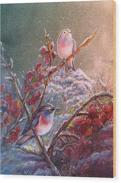 Bluethroat On The Tundra/ #3 Wood Print