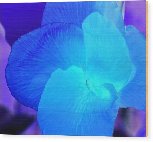 Blurple Flower Wood Print