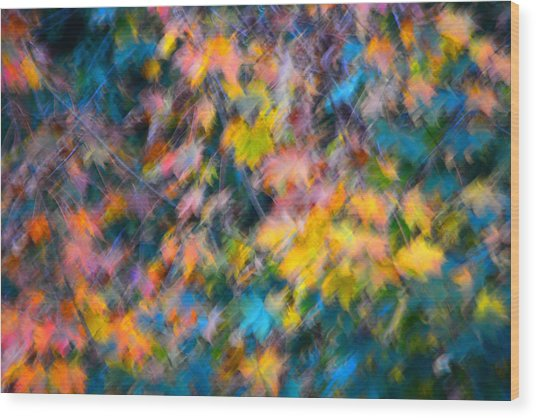 Blurred Leaf Abstract 3 Wood Print