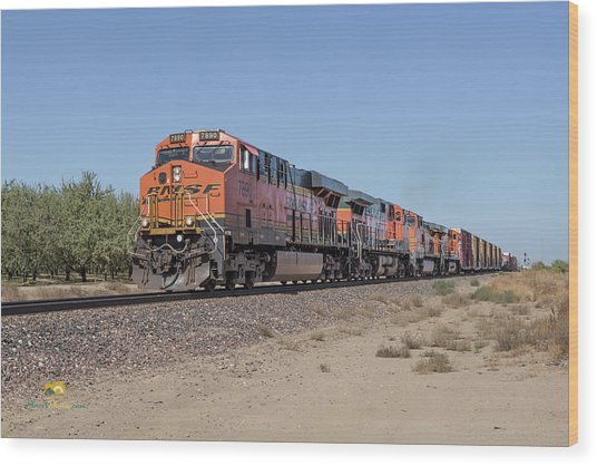 Wood Print featuring the photograph Bnsf7890 by Jim Thompson