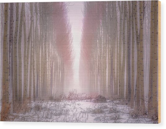 Boardman Tree Farm  Wood Print