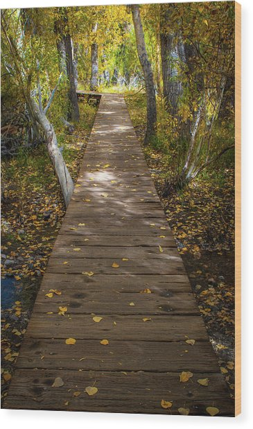 Boardwalk Over Convict Creek Wood Print