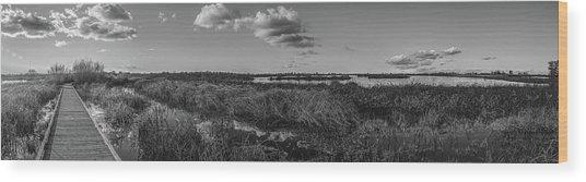 Boardwalk Panorama Monochrome Wood Print