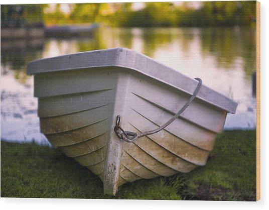 Boat On Land Wood Print
