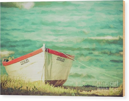 Boat On The Shore Wood Print