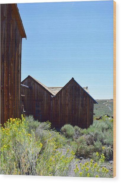 Bodie In Bloom Wood Print