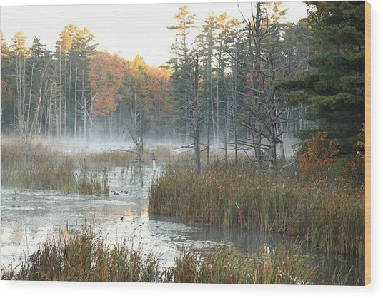 Bog Fog Wood Print