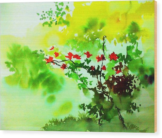 Boganwel Wood Print