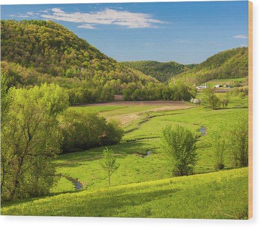 Bohemian Valley Wood Print