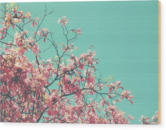Boho Cherry Blossom 1- Art By Linda Woods Wood Print